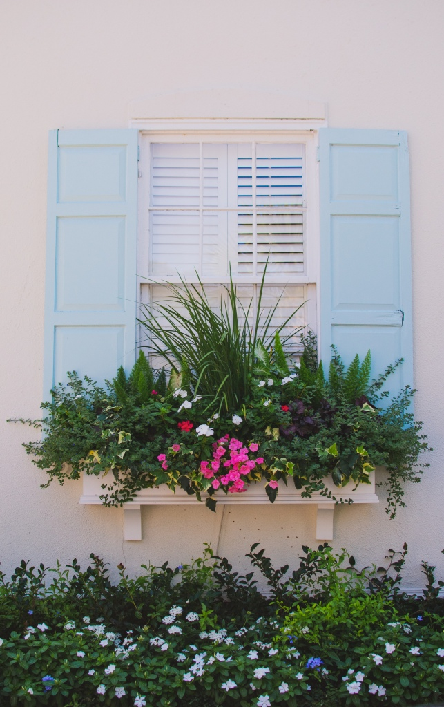 Light blue shutters and colorful windowbox